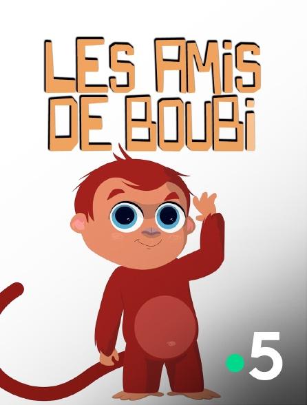 مجموعه آموزش زبان فرانسوی Les Amis de Boubi